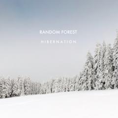 random forest.jpg